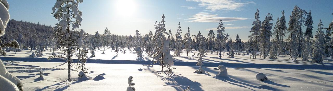 Talvi Ylläksellä